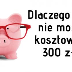 seo 300 zł