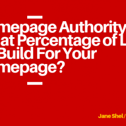 Homepage Authority or What Percentage of Links To Build For Your Homepage_